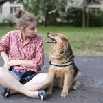 10 faktów o Chrupku na Dzień Psa