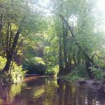 Spacer pod Warszawą – moje 7 ulubionych miejsc