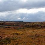 Planeta Islandia