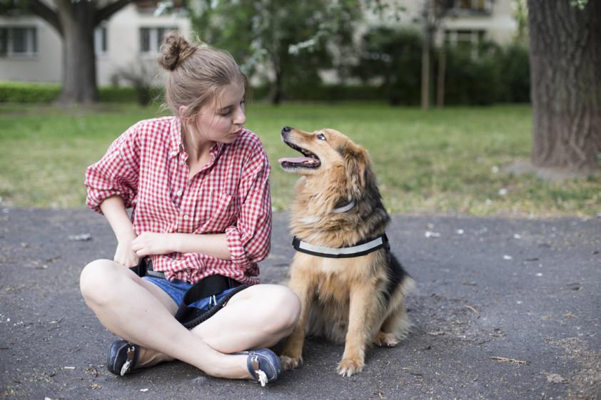 10 Faktów O Chrupku Na Dzień Psa Joanna Glogaza