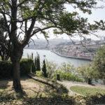 Porto – część druga i ostatnia